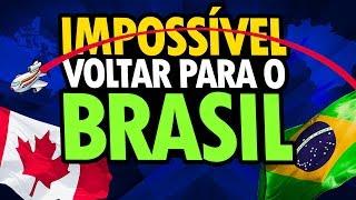 IMPOSSÍVEL VOLTAR PARA O BRASIL! - POLÊMICA!