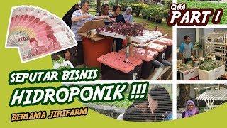 Q&A Seputar Bisnis Hidroponik 1 of 3 #2019 #hidroponik #pertanian #aquaponik #sayuran