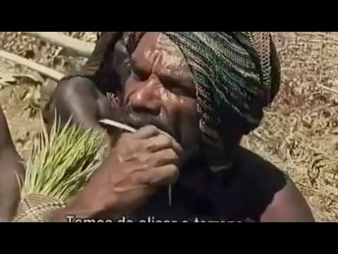 xxx Uncontacted Amazon Tribes : Isolated Tribes Of The Amazon Rainforest 2015 (Documentary)