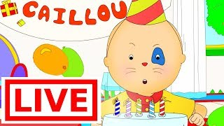 CAILLOU FULL EPISODES LIVE | Fun for Kids | Cartoons for Kids | Cartoon for Children | Cartoon movie