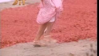 sridevi's anklet feet in saree