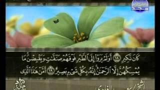 سورة الملك بصوت الشيخ سعد الغامدي المجد للقرآن الكريم