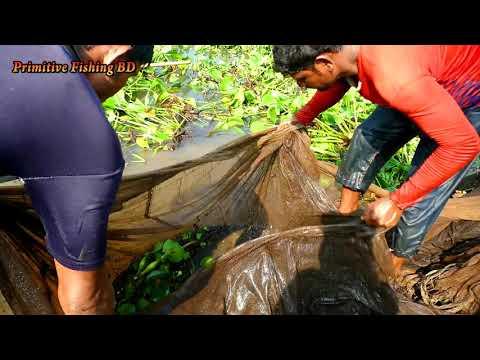 Xxx Mp4 Amazing Baam Fishing In River Big Fish Catching By Net 3gp Sex