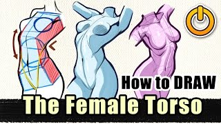 How To Draw The Sexy Female Torso EXPLAINED!