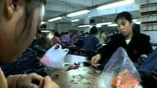 PBS Independent Lens - China Blue (2007.TVRip.SoS)_HDTV.avi