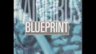 Rainbirds - Blueprint (lyrics on clip)