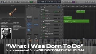 Bring It On! PRO Karaoke/Instrumental
