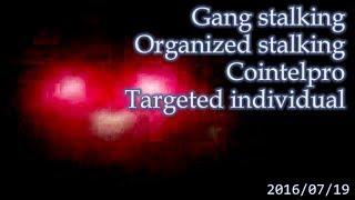 集団ストーキング被害者の記録 2016.7.19  Gang Stalkng Organized stalking Cointelpro Targeted Individuals