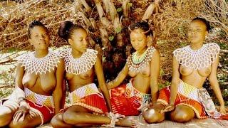 VIRGINITY TESTING STARS (AFRICA AMAZING)