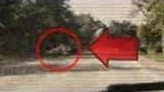 Werewolf   Dogman Sighting caught On Tape , Michigan Dogman , Real Video NEW