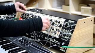 Dreadbox modular jam