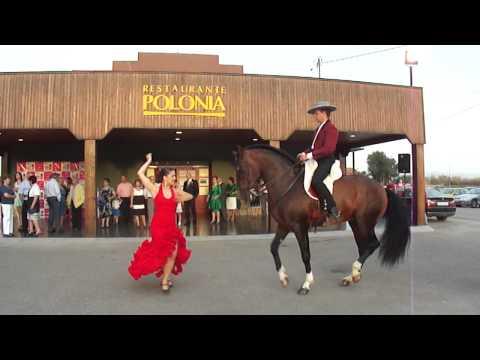 Verónica Nana Sorpresa boda Sevillana con caballo