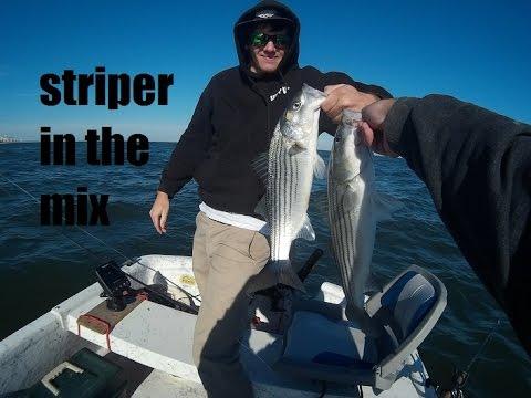 stripers in the mix - Virginia beach, VA (rudee inlet)