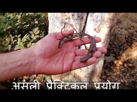 काले घोड़े की नाल का चमत्कारी प्रयोग Kaale Ghode ke Naal Ka Chamatkari Prayog