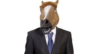 Having A Horse As A Colleague    CopyCatChannel