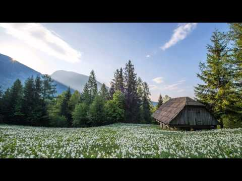 3 Hours of Relaxing Celtic Music Harp & Flute Meditation Relaxation & Study