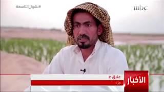 تقرير قناة mbc عن الرز الحساوي | سناب الاحساء