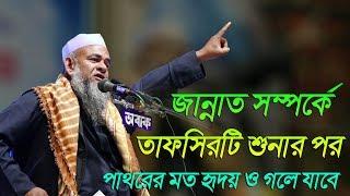 জান্নাত সম্পর্কে একটি পূর্ণাঙ্গ আলোচনা | Bangla Waz 2018 Maulana Farid Uddin Al Mobarak