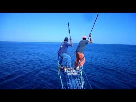 Pesca albacora RENI 547 taltal