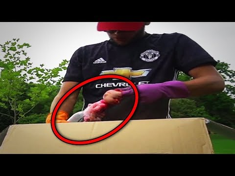 10 Scary Dark Web Mystery Box Openings By YouTubers
