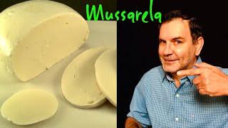 Como fazer queijo Mussarela em casa