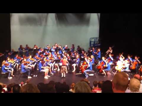 WSSO Chambers Orchestra - Eleanor Rigby