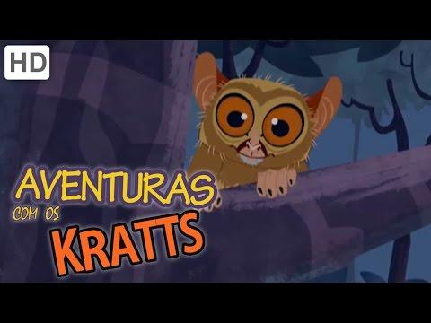 Aventuras com os Kratts Insecto Ou Macacos e Ensopado de Floresta Parte 2 Episódio Completo