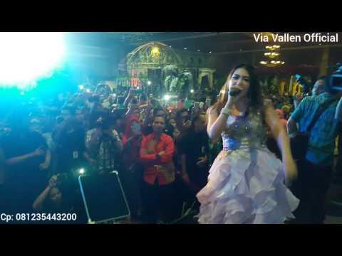 Via Vallen nyanyi sayang, pengantin langsung turun pelaminan