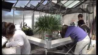 Mercer in a Minute: Horticulture (2014)
