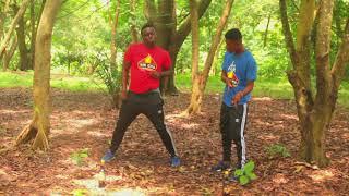 Yaa Pono Obiaa wone master ft stonebwoy Dance cover by Royal heat Dancers