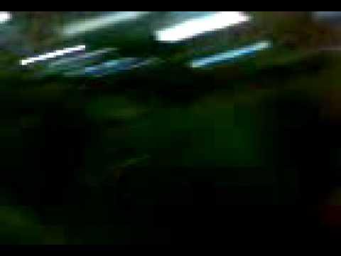 Xxx Mp4 Julian En Baile Erotico En El Sex Entretainement 3gp 3gp Sex