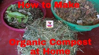 How to Make Organic Fertilizer || How to Make Organic Compost at Home (Urdu/Hindi)