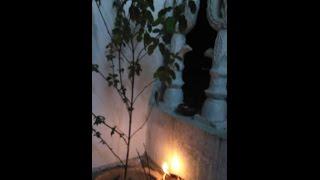 Kaati Bihu Vlog| Indian Assamese festival| Bonus video Full HD