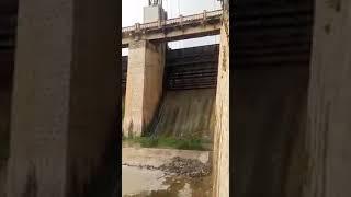 Dam Gates Open gonegandla. Gajuladinne