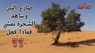 """هل تعلم من هو الرجل الذي لعب المصارعة مع النبي وشاهد معجزة تقشعر لها الابدان""""شجرة تمشي"""" ؟؟سبحان الله"""