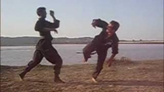 pakistani ninja