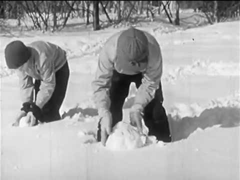 Play In The Snow (1945)