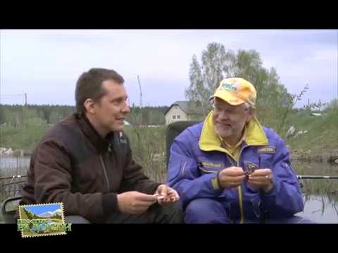 видео ловля карпа в камышах