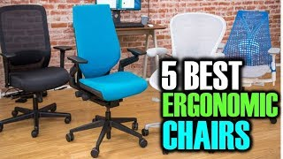 5 Best Ergonomic Chairs   Best Ergonomic Chairs   Best Ergonomic Chairs Reviews