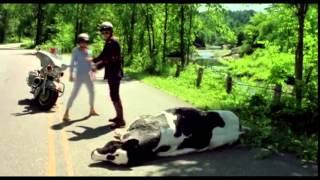 La vaca Inmortal - Irene, Yo y mi otro yo