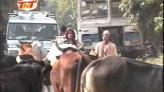 Hum Hain Banaras Ke Bhaiya- Bhojpuri Comedy Song
