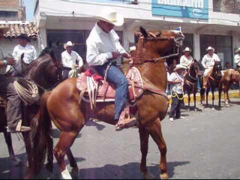 Pitillal Fiesta
