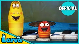 LARVA - Funny Animation | THE LARVA