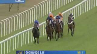 2010 Goodwood Sussex Stakes