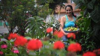 Martha Torres, la mujer más verde del sur de Bogotá | El Espectador