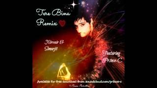 PR1NCE-C | Nirvair |Tere Bina (Remix)
