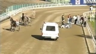 Harness Racing Accident,Harold Park-26/06/1995 heart attack (Gaelic Uprising-Stephen.J.Ward)