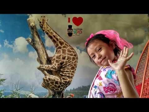 Kasih Makan Iguana Banyak dan Gede-gede
