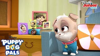 I Would Do Anything Music Video | Puppy Dog Pals | Disney Junior