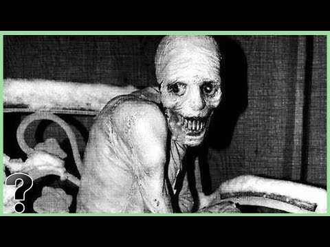 Xxx Mp4 Was The Russian Sleep Experiment Real 3gp Sex